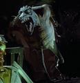 Wolfman4