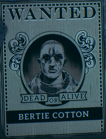 Bertie Cotton