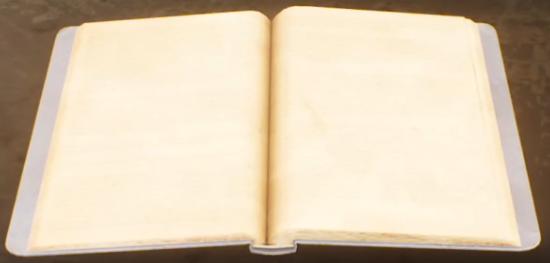 Adjutant Akande's notebook