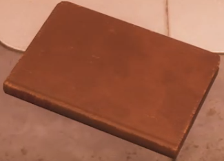 Felix's journal