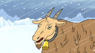 S4E26.138 Realistic Goat Thomas