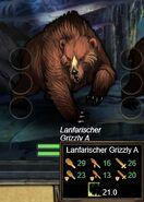 Lanfarischer Grizzly