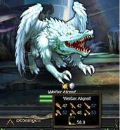 Weißer Aligreif