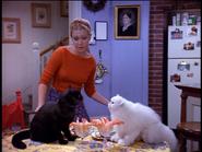 Season4 Salem&Juliette