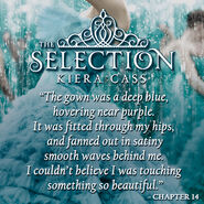 Book-quotes-the-selection-series-30803282-500-500