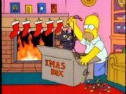 Homer a kočka.jpg