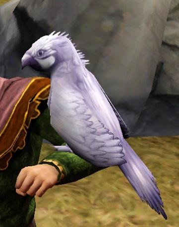 White Cockatoo 2.jpg
