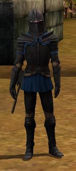 Darkstone bulwark male.png