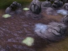 Leech Pond.jpg