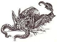 Poulpe-criquet-scorpion