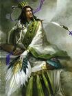 Zhuge Liang - DW6
