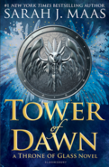 Tower of Dawn - UK cover