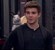 Max and Colosso As Bunny