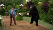 Heinrich fighting a bear