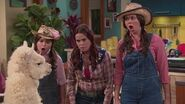 """Sat, Jan 27th Night of Premieres w all new """"The Thundermans"""" & """"Nicky, Ricky, Dicky & Dawn""""! HD"""