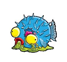 Scruffer Fish