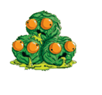 Yuck Sprout Artwork.png
