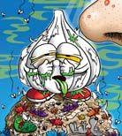 Sick Garlic Trading Card 1.jpg