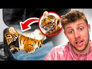 Craziest Things Found by Airport Security!