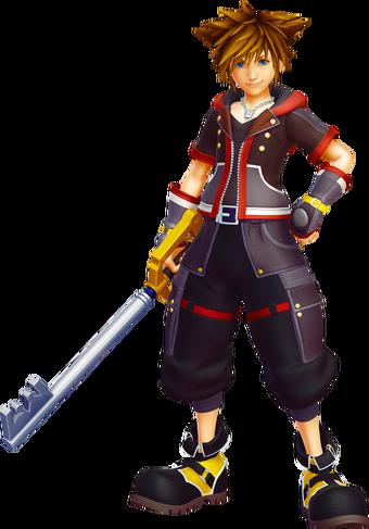 Sora The United Organization Toons Heroes Wiki Fandom