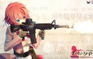 Salem gun