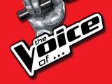 The Voice (TV series)