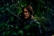 TWD S9 Nature Daryl