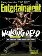 Walking-dead-Michonne-character-magazine-issues-03