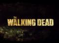 The Walking Dead (serie de televisión)
