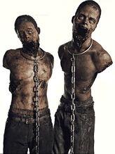 Mascotas de Michonne
