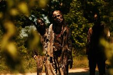 Twd-s10b-walker1-SHADOWS