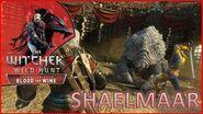 The Witcher 3- Como matar Shaelmaar - KILLTHEBOSS 23