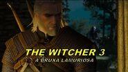 The Witcher 3 A Bruxa LAMURIOSA