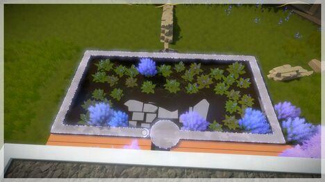 Entry Environmental3.jpg