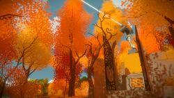 Orange tree grove splash.jpg