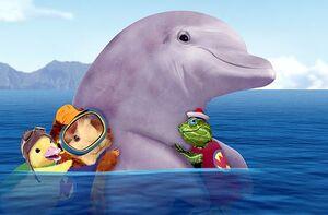 Dolphinbaby.jpg