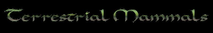 Terrestrial Mammals.png