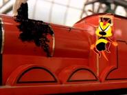 Buzz,Buzz23