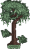 Yew Tree.png