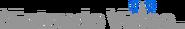Nintendo Video logo