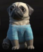 Lady Penelope's Pug Sherbert