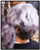 Man with grey hair (impostors)