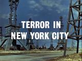 Terror in New York City