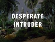 Desperate Intruder