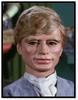 Gordon (Cham-Cham)