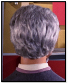 Grey haired man (conference)
