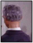 Man with grey hair(tda.gh)
