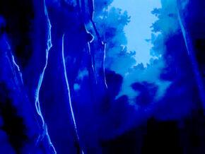 Midnight Woods2.jpg
