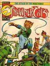 ThunderCats (UK) - 014.jpg