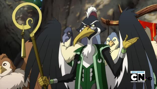 Bird Judge (2011)